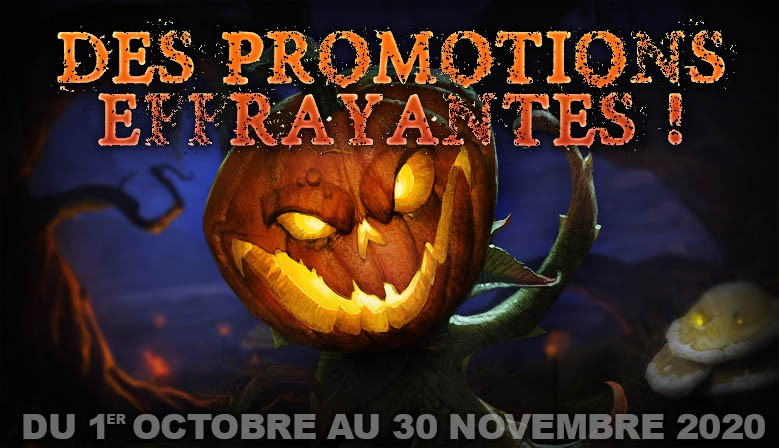 Promotion Octobre - Novembre 2020